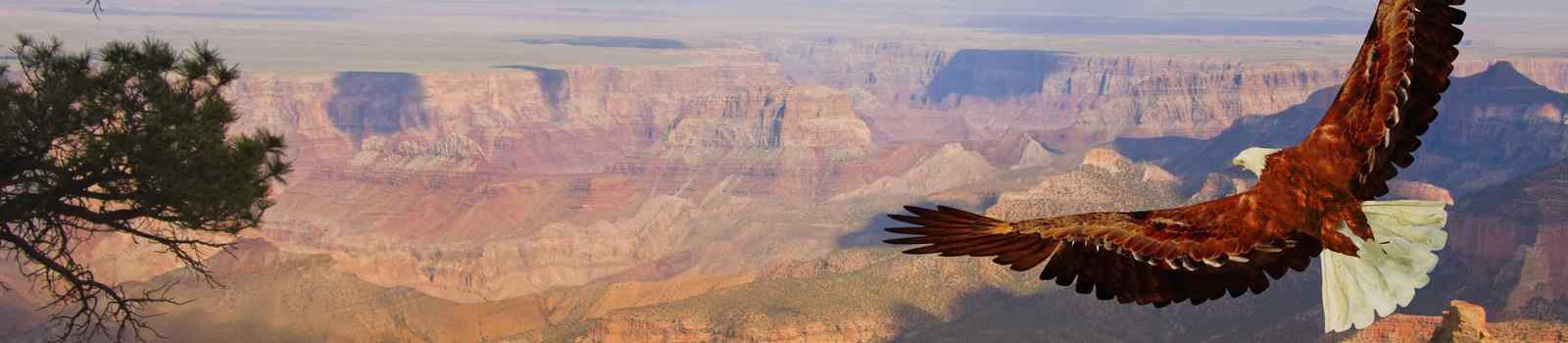 AB-WILD-WEST -USA Grand Canyon