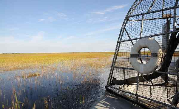 FLORIDA-ENTDECKEN Florida airboat Everglades 43315165