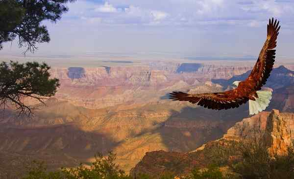 MOTORRAD_SCC_USA Grand Canyon.jpg