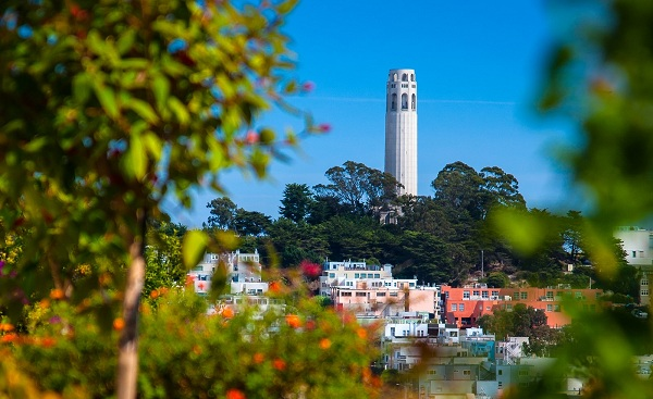 SAN-FRANCISCO-RAIDERS San Francisco Coit Tower on Telegraph Hill 173728673